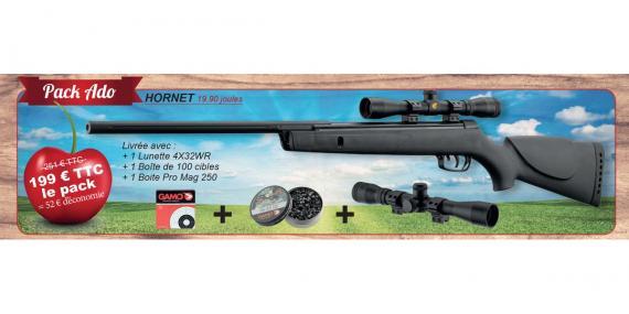 Kit carabine GAMO Hornet 4.5 mm (19.9 joules) - PACK CERISE 2016