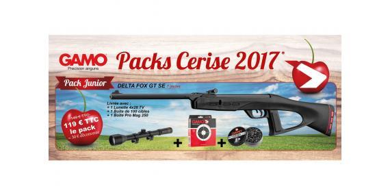 GAMO Delta Fox GT SE airgun kit (7 joule) + 4x28 scope - CHERRY PACK 2017