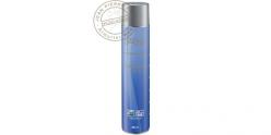 Bonbonne de Gaz pour Soft Air - 600 ml