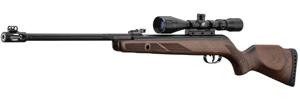 carabine a plomb gamo hunter 440 as