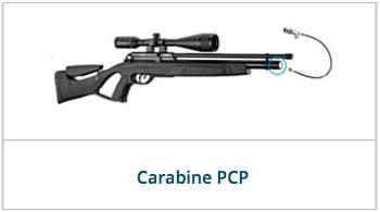 carabine pcp